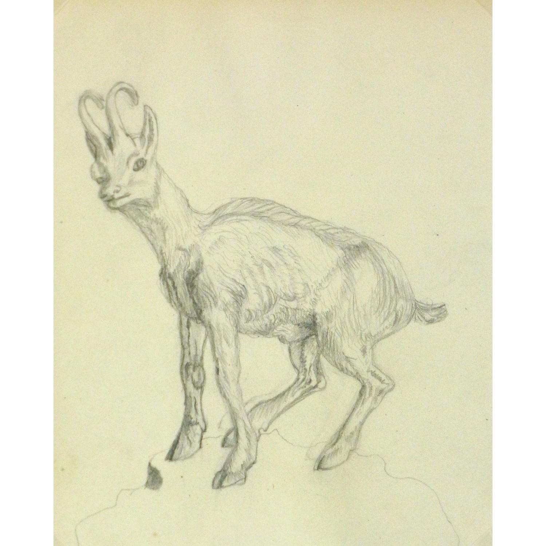 Antique Pencil Drawing Goat - 9188m