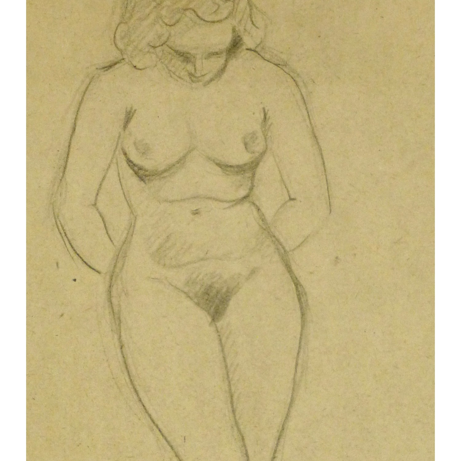 Female Nude Drawing 114