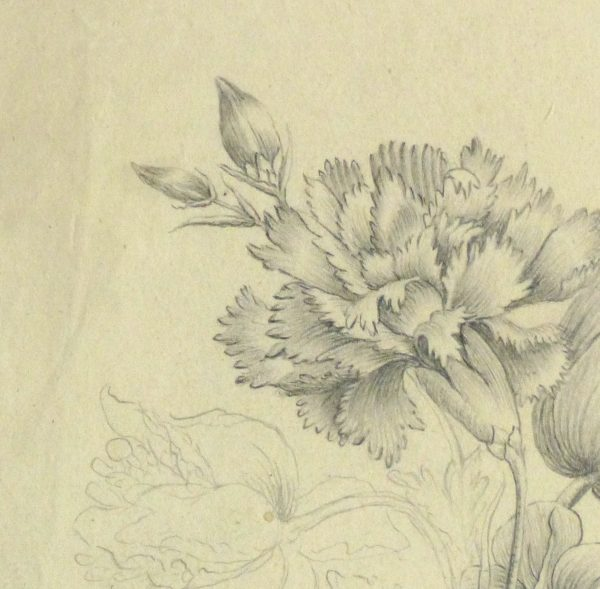 Pencil Drawing - Delicate Bouquet-detail 2-10162M