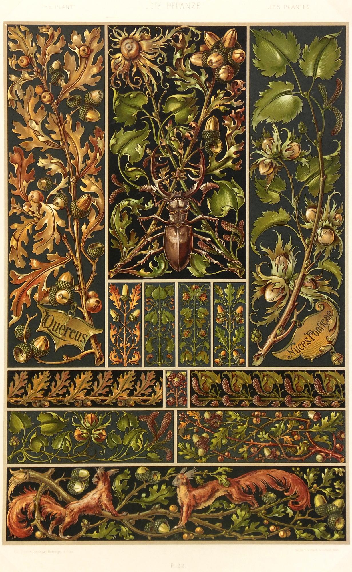 Lithograph - Nature's Interiors, 1886-main-5629K