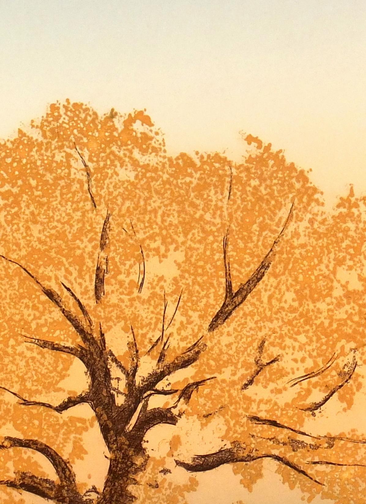 Oak at Dawn, Circa 1980-detail-7491K
