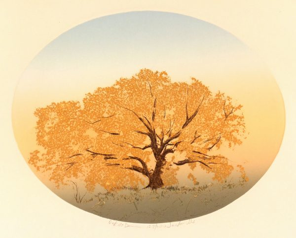 Oak at Dawn, Circa 1980-main-7491K