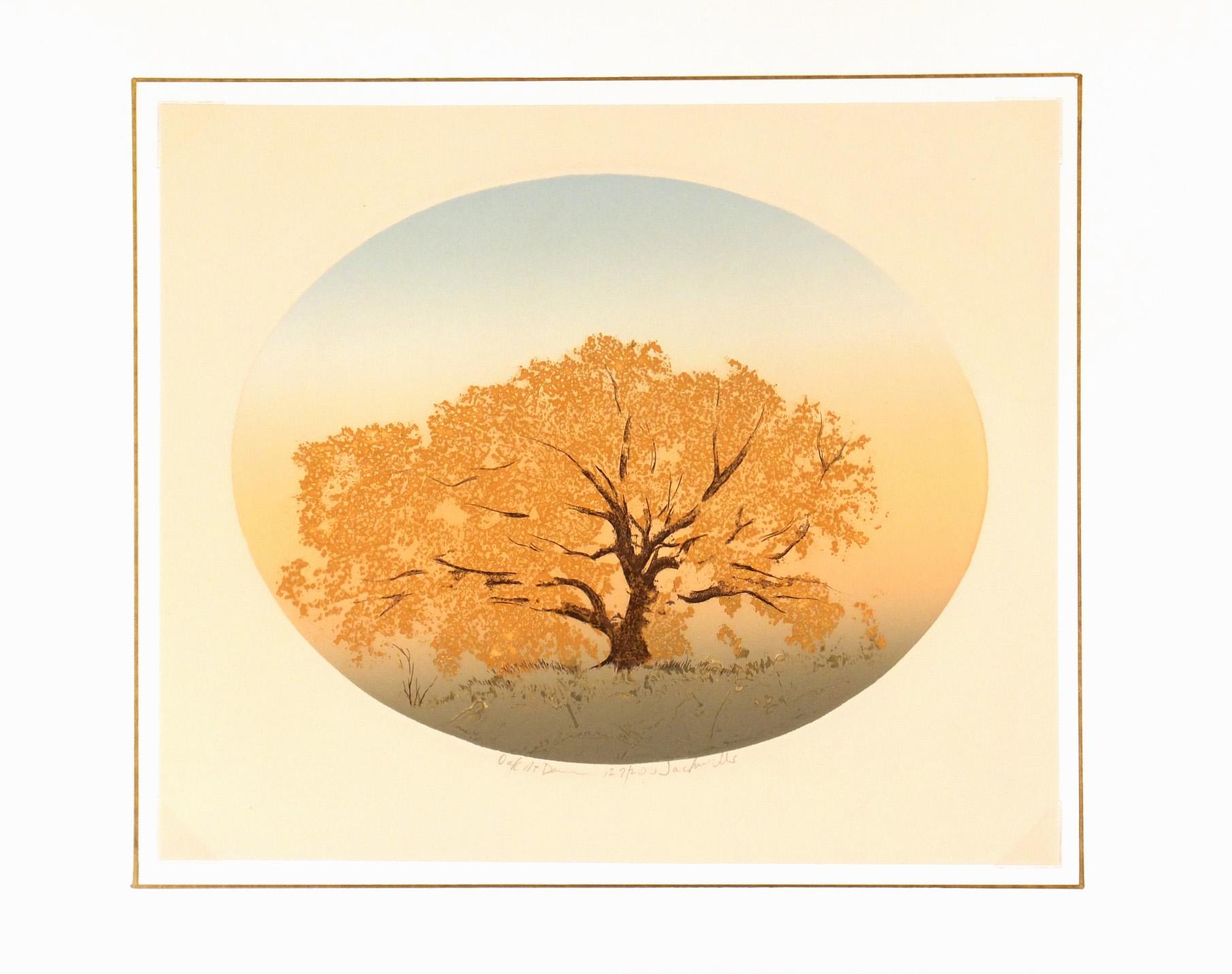 Oak at Dawn, Circa 1980-matted-7491K
