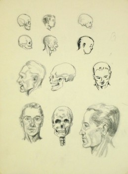 Drawing - Cranium Study, Circa 1960-main-8249K