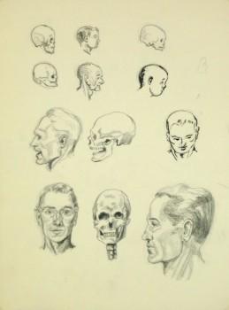 Drawing - Cranium Study, Circa 1960-main-8249K