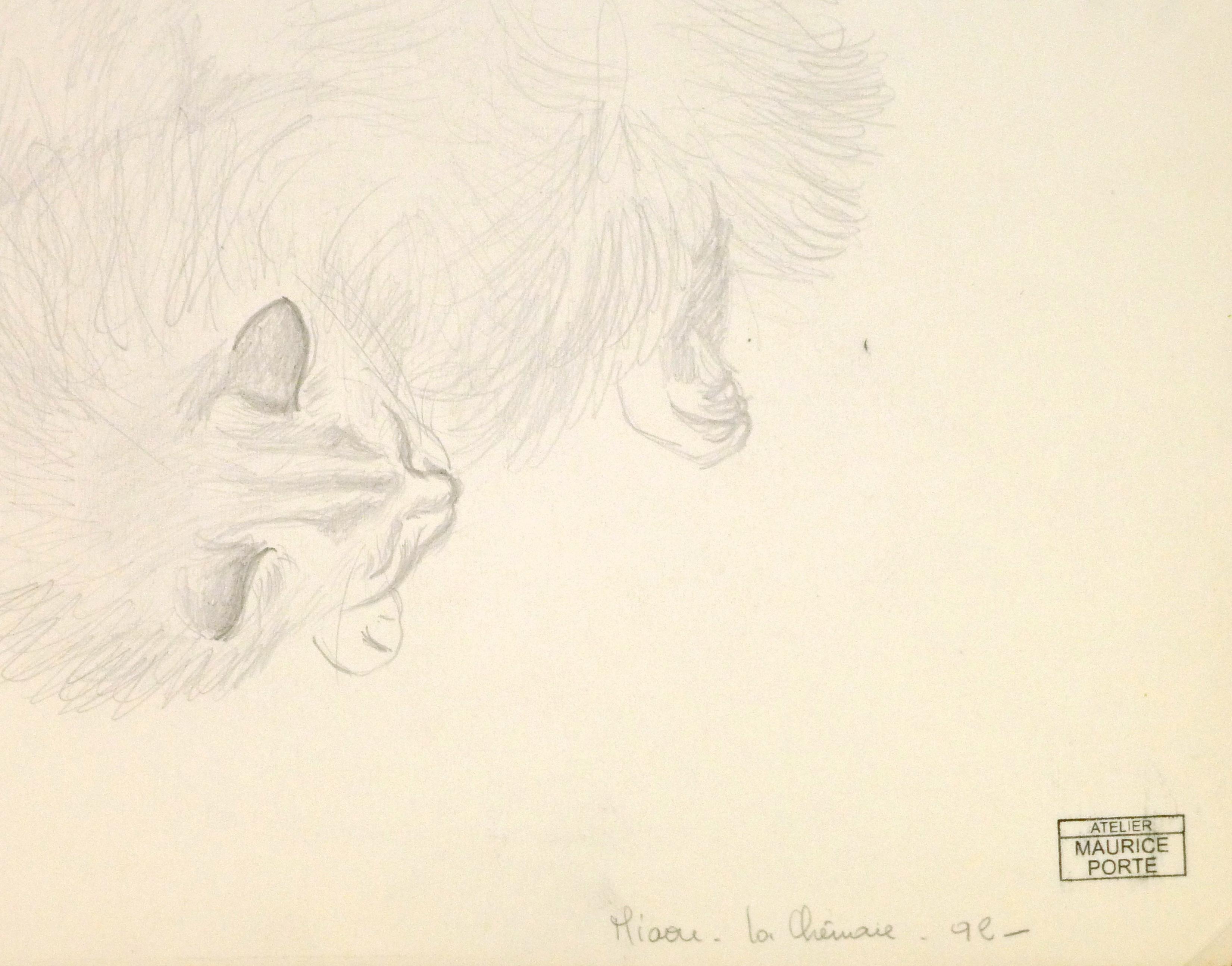 Drawing - Sleeping Cat, Circa 1990-detail-8292K