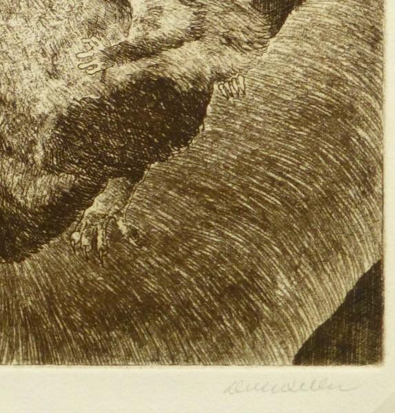 Possums, Circa 1960-detail-9564K