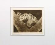 Possums, Circa 1960-matted-9564K