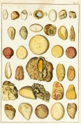 Geology, Circa 1790-main-K4888
