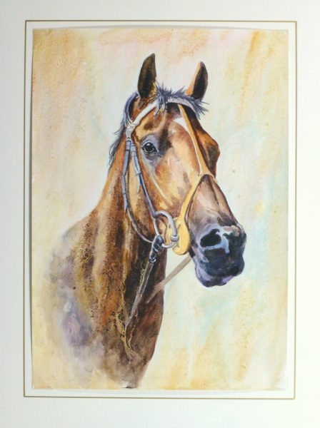 Equine Portrait Watercolor, 2011-matted-10536M