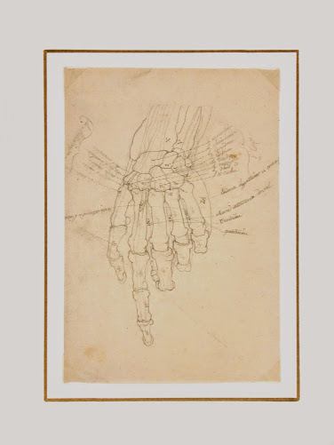 Drawing - Hand Study-matted-7517G