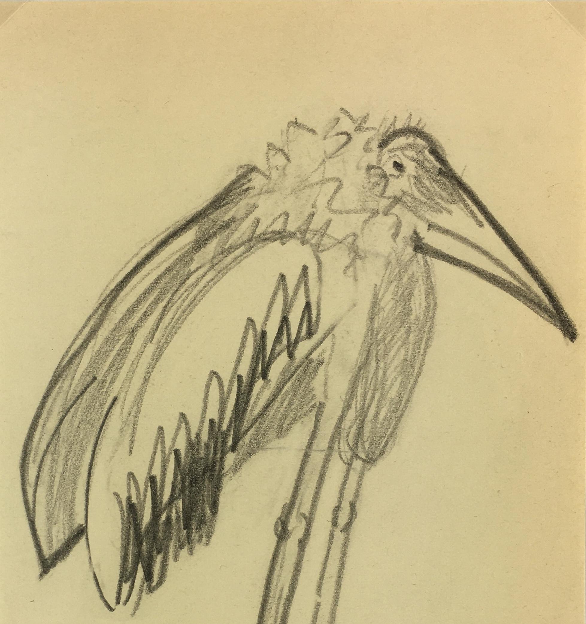 Animals Original Art - Marabou Stork, French, 2000s