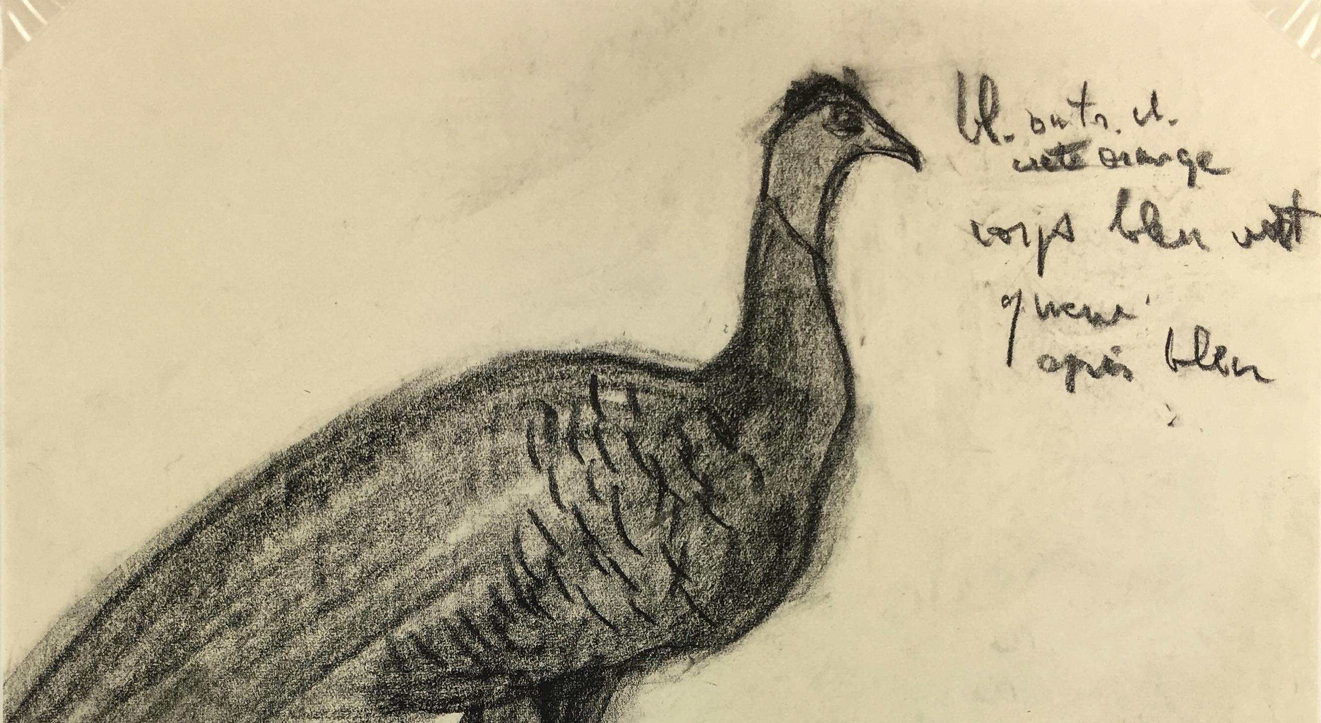 Animals Original Art - Pheasants, Schwerb, c.1960