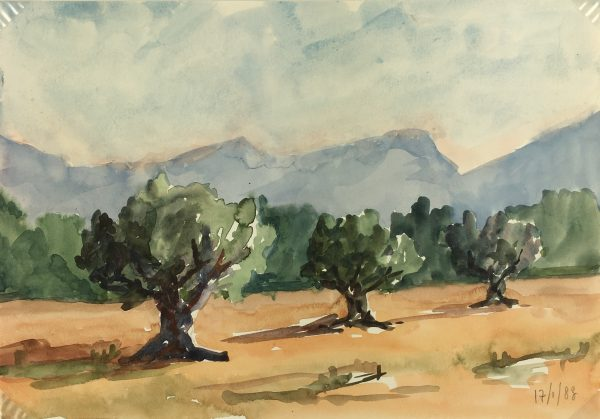 Provence, France Original Art - Olive Trees, R. Bailly, 1983
