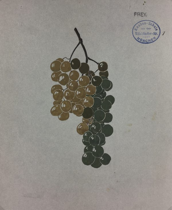 Still Life Original Art - Grapes, Frey, c.1920