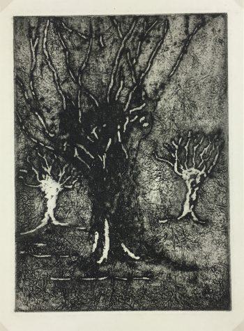 Engravings & Etchings Original Art - Etching - Trees, George Ball, 1981