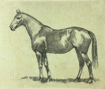 Animals Horses Original Art - Equestrian, A.Marchand, C.1905