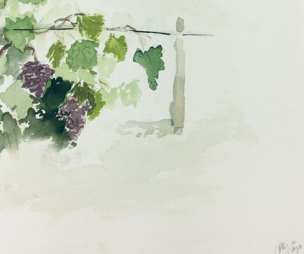Farm Landscapes Original Art - Vineyard, 1996