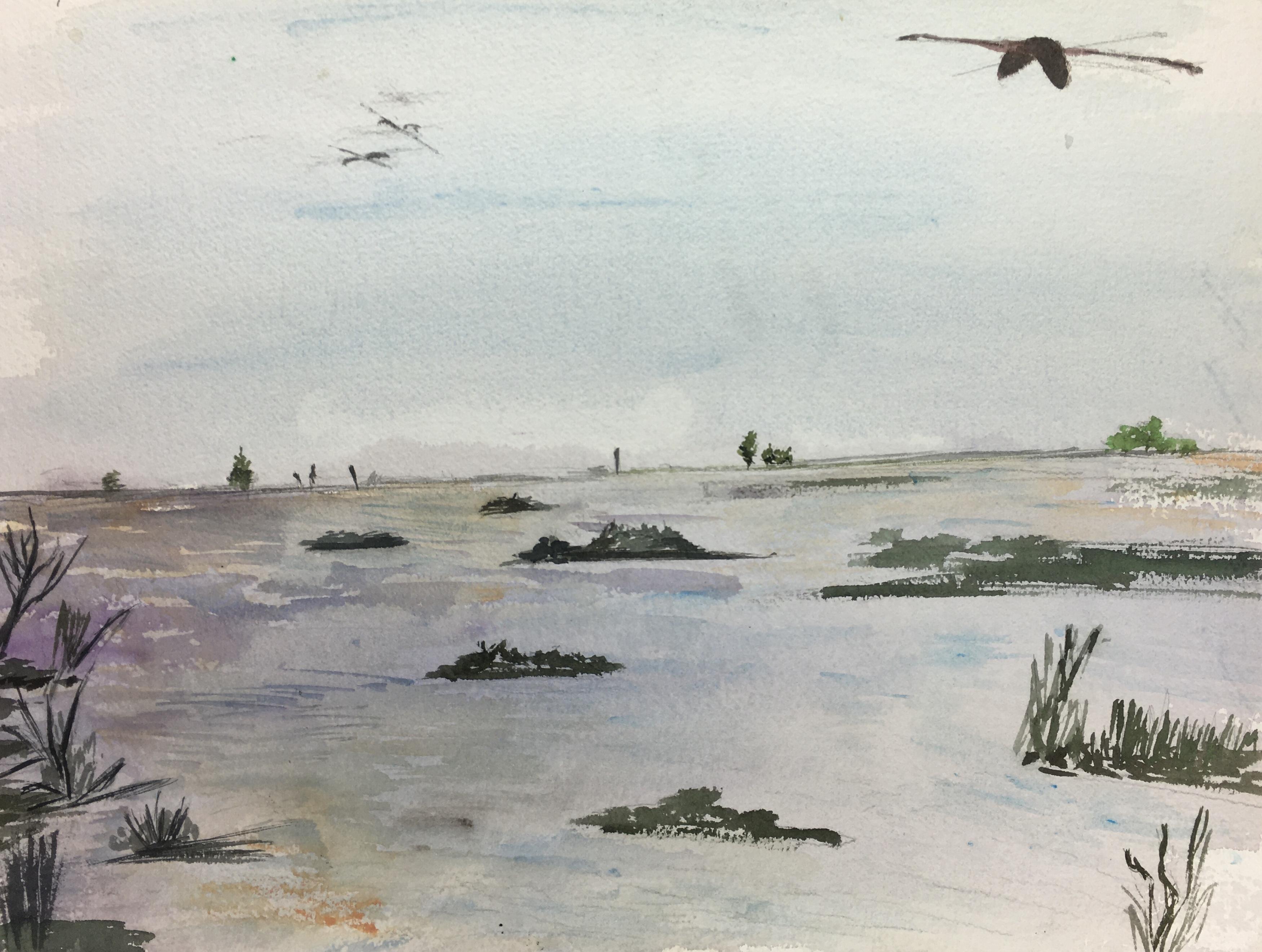 Animals Fish & Fishing Original Art - Quiet Marsh, c.1960