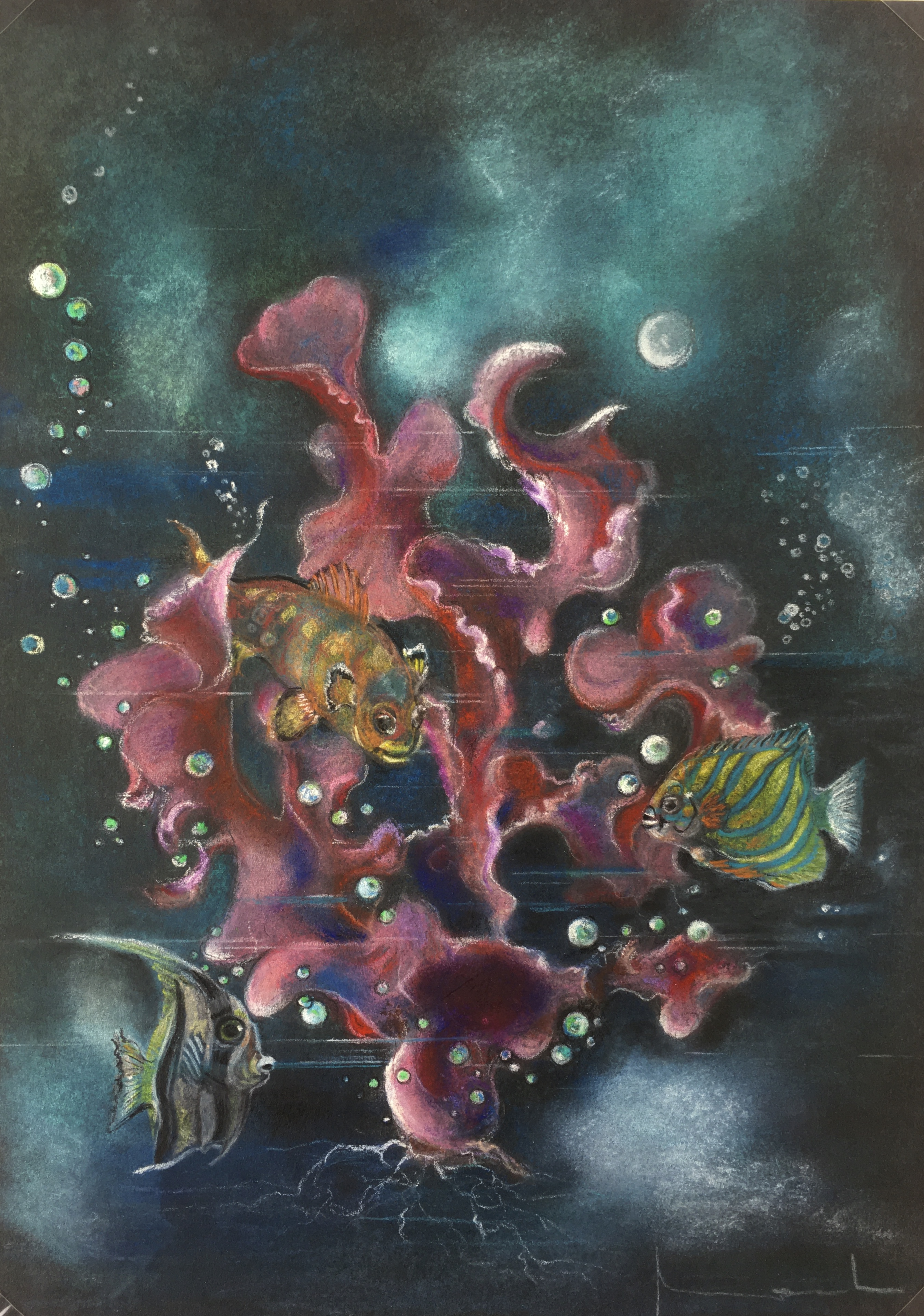 Animals Fish & Fishing Original Art - Fish, Coral Reef, c.1960