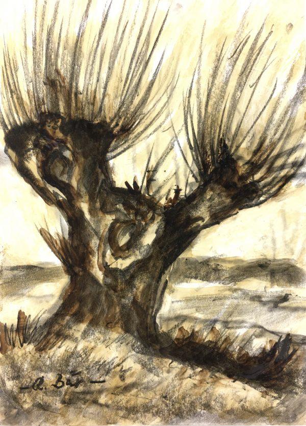 Trees Original Art - Plane Tree, A. Bar, C.1950